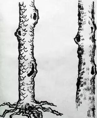 山水画中树木的分类及画法